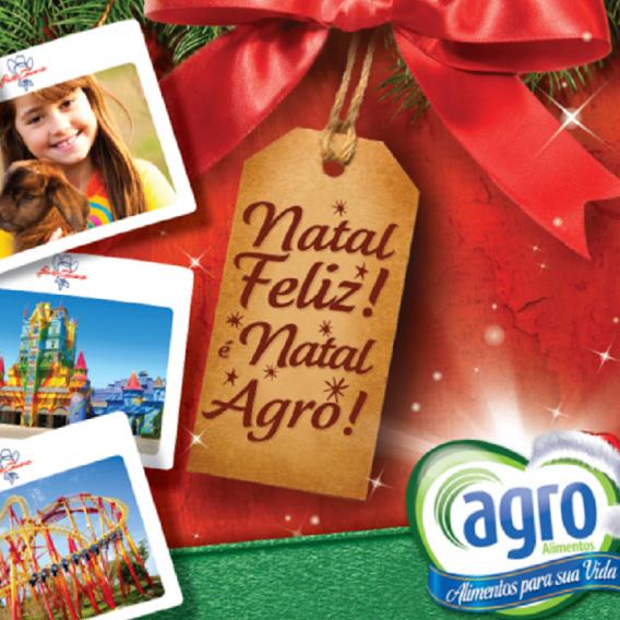 Criação de catálogo da Campanha de Natal Agro